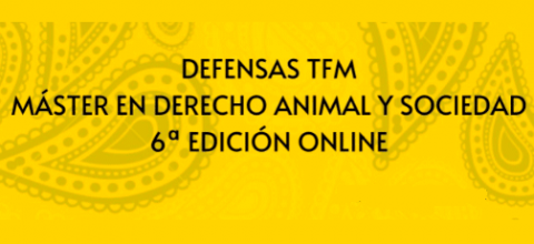 Defensas TFM